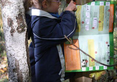 Permanent oriëntatieparcours voor kinderen